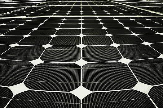 Evelina Kremsdorf - Energy Net