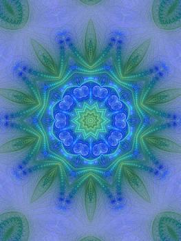 Enlightened by Zannie B