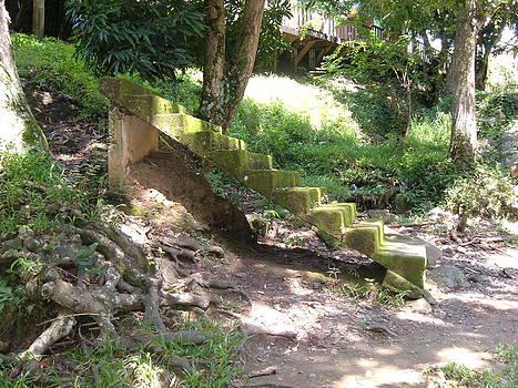 Escalera by Judith Correa