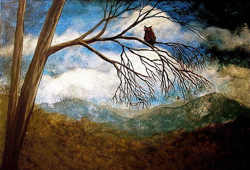 Evening draws in by Heather Matthews
