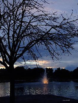 Donna Blackhall - Evening Falls On Youth
