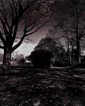 Evening Park Walk by Sivakolunthu Loganathan