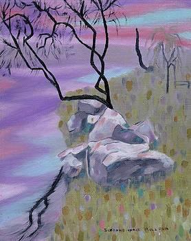 Suzanne  Marie Leclair - Evening Reflecltion