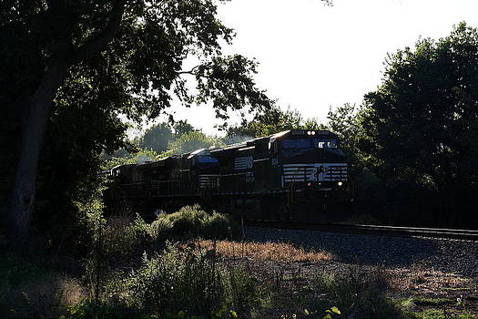 Evening Train by Anthony Wilder