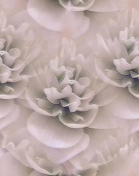 Everlasting Lotus In Lavender by Lynn De Serres