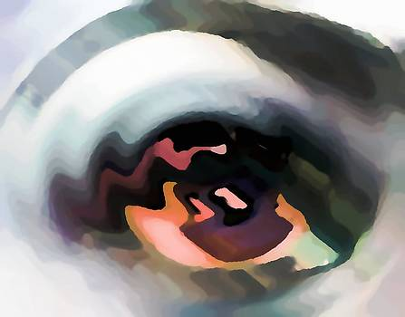 Eye catching by Rod Saavedra-Ferrere