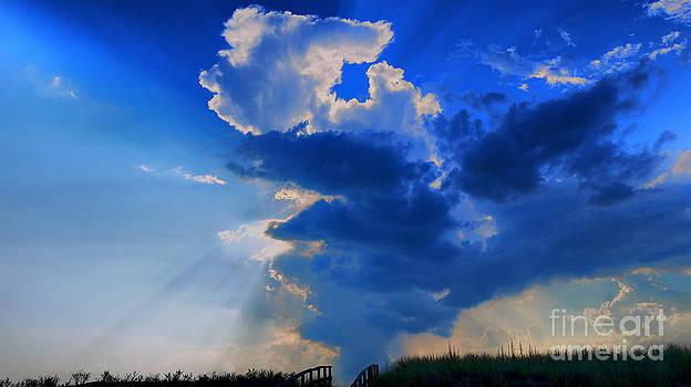 Face in the Cloud by Nancie DeMellia