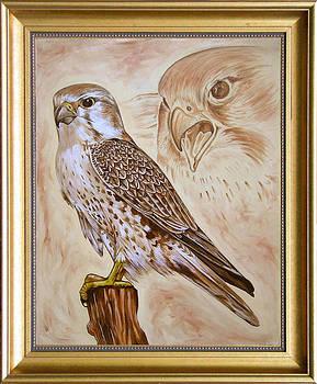 Falcon by Tomy Joseph