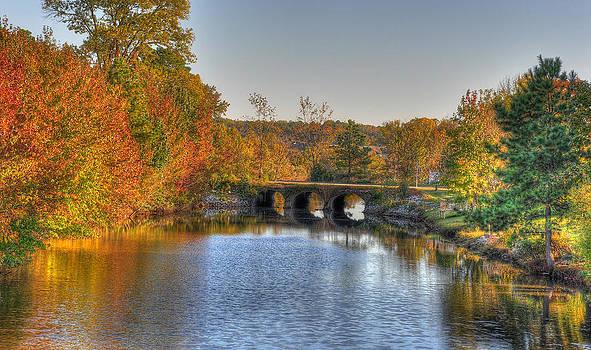 Fall Bridge by Tazz Anderson