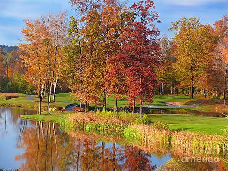 Fall Colors by Jeanne  Woods