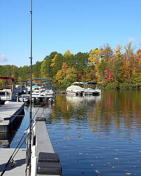 Fall Fishing Break by Sandi OReilly