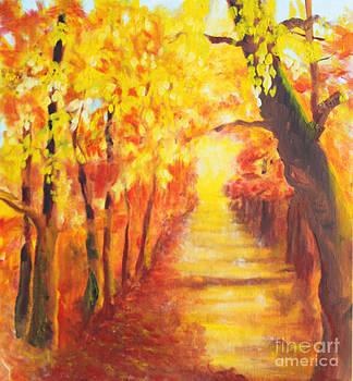Fall glow by Joan Putnam