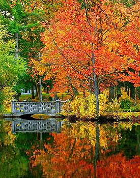 Fall in New Hampshire by Mike Berry