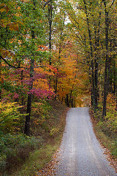Fall in Southern Indiana by Melissa Wyatt