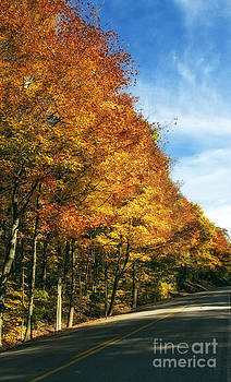 Kathleen K Parker - Fall Lined Road in West Va