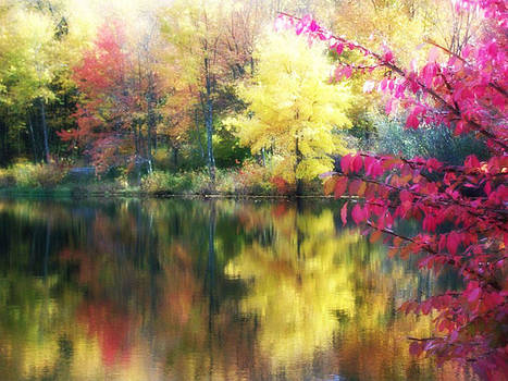 Fall Reflections by Strong Heart