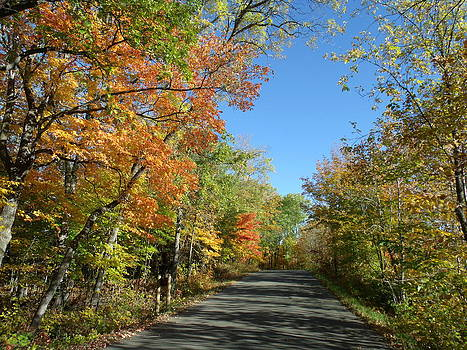Fall Road in Blue by Brian  Maloney