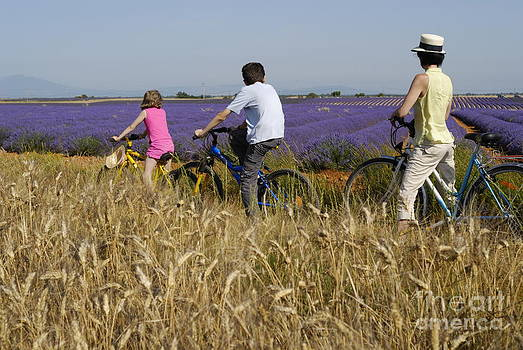 Sami Sarkis - Family contemplating lavender field during bicycle trip