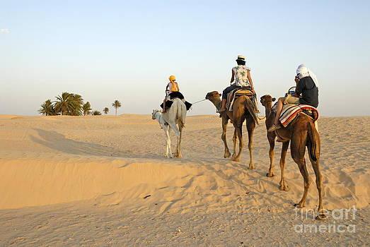 Sami Sarkis - Family riding three camels in desert