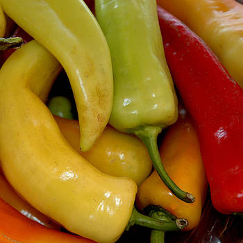 LeeAnn McLaneGoetz McLaneGoetzStudioLLCcom - Farm Fresh Peppers