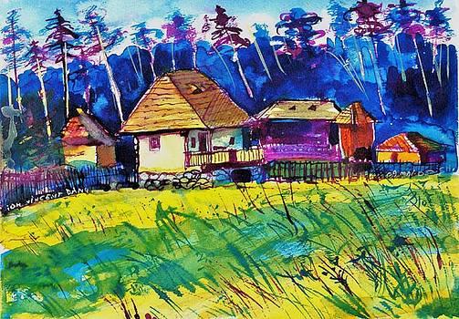 Ion vincent DAnu - Farm Houses near Sibiu Romania