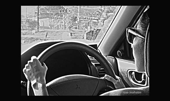 Fast Car by Rosa Mahabir