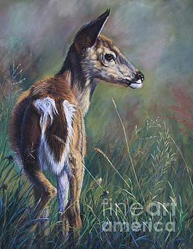 Fawn by Deb LaFogg-Docherty