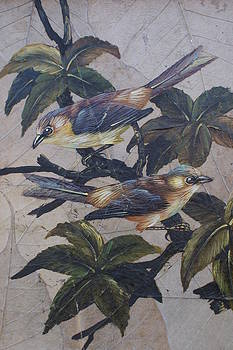 Feathered Pair by William Ohanlan