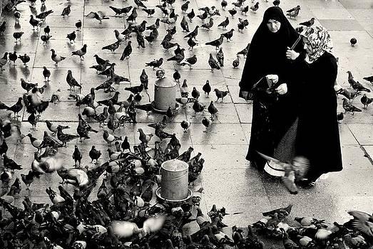 Dean Harte - Feeding the Pigeons