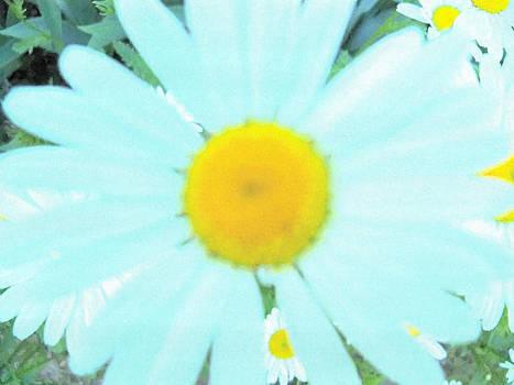 Feeling Blue by Shirley OBrien