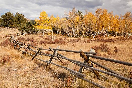Adam Pender - Fence at Kenosha Pass