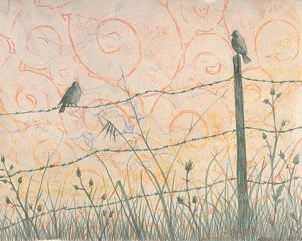 Fence Line by Sara Bell