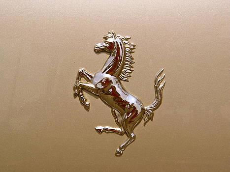 Ferrari Two by Hunter Huebsch