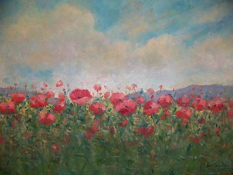 Field of red poppies by Bart DeCeglie