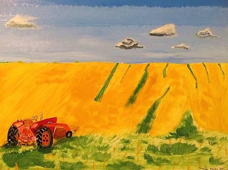 Fields of Gold by Tyler Martin