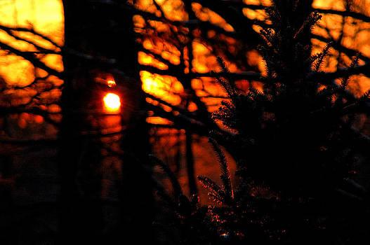LeeAnn McLaneGoetz McLaneGoetzStudioLLCcom - Fiery Sunrise Michigan