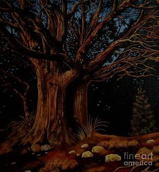 Fire Trees by Kimberlee  Ketterman Edgar