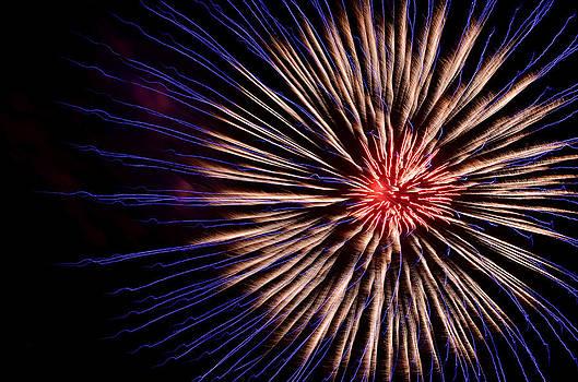 Victoria Wise - Firework