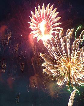Fireworks #2 by Teresa Grace Mock