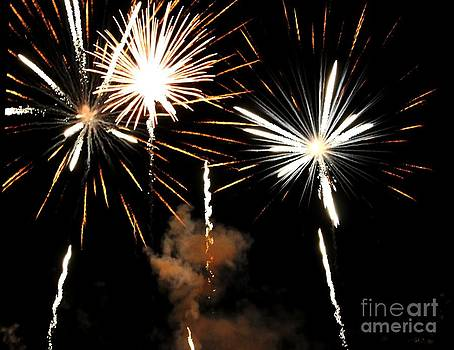 Fireworks Blossoms by Theresa Willingham