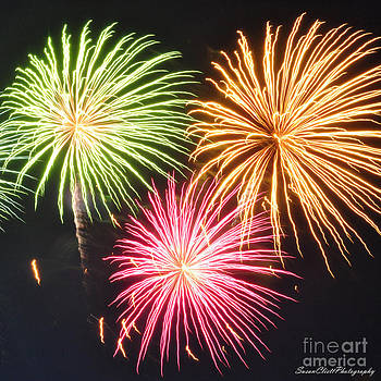 Fireworks by Susan Cliett