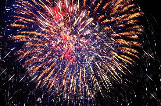 Fireworks by Susan Leggett