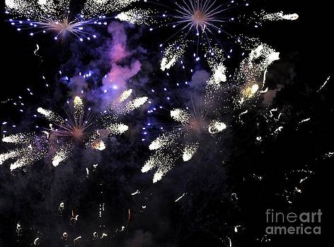 Fireworks by Theresa Willingham