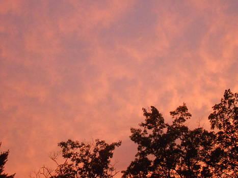 Firey Summer Sky at Sunset by Lila Mattison