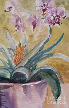 Five Purple Orchids  by Emily Michaud
