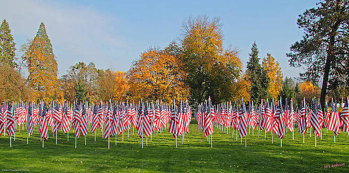 Mick Anderson - Flags of Honor