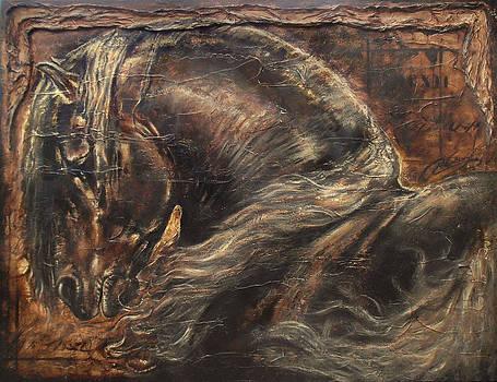 Flamenco by Paula Collewijn -  The Art of Horses