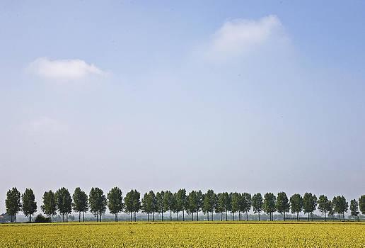 Flemish landscape by Frits Selier
