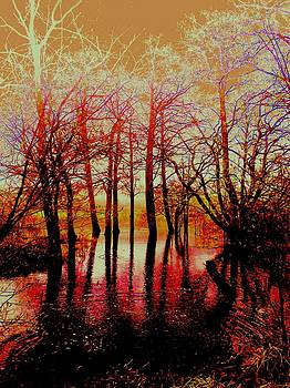Flooded Woods by Angela Kelman