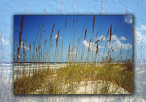 Perfect Day at a Florida Beach by Barbara Middleton